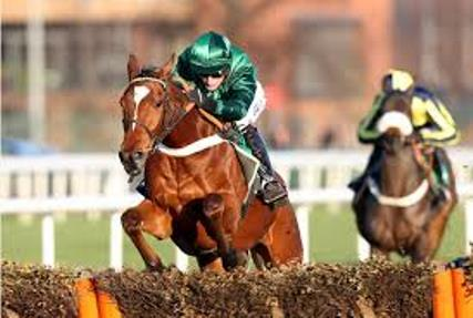 Peace and Co grade 1 cheltenham winner