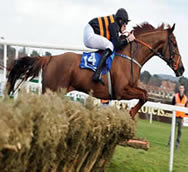 River Liane racehorse winner